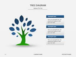powerpoint slide templates   tree diagrampowerpoint   tree diagram