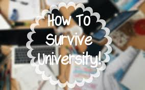 how to survive london universities tips on getting a first 9825how to survive london universities tips on getting a first class degree 9825 shreya masters