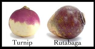 Image result for turnip quotes
