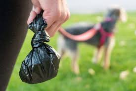 The Best <b>Dog Poop Bags</b>: Reviews by Wirecutter