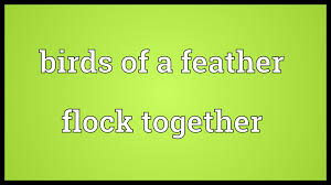 Birds of a feather flock together Meaning   YouTube Birds of a feather flock together Meaning