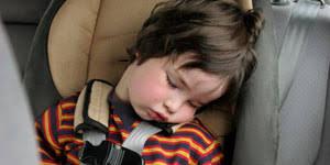 <b>Kids</b> too <b>small</b> for adult seatbelts - Health & Wellbeing