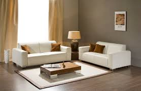 unpretentious small living room furniture combined with catchy floor vase and wall photo ideas amazing small living room furniture