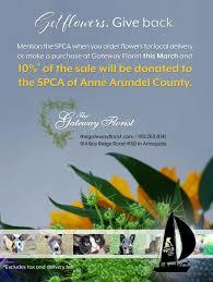 SPCA of Anne Arundel County