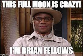 THIS FULL MOON IS CRAZY! I'M BRIAN FELLOWS | image tagged in brian ... via Relatably.com