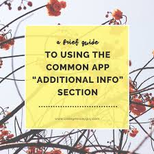 a brief guide to using the common app additional info section a brief guide to using the common app additional info section