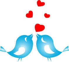 Hasil carian imej untuk love birds