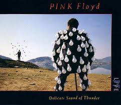 Pink Floyd - <b>Delicate Sound Of Thunder</b> | Releases | Discogs