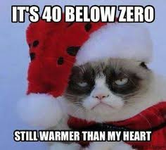 Winter memes on Pinterest | Meme, Grumpy Cat and Winter via Relatably.com