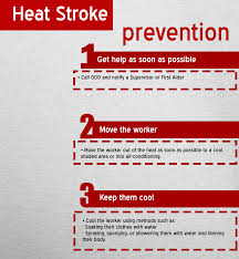 heat stress the dangers of summer dws heat stroke image