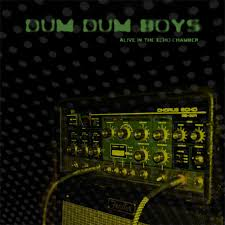 Dum <b>Dum Boys</b> - <b>Alive In</b> The Echo Chamber (2013, Vinyl) | Discogs