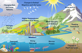 Image result for climate photos