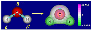 Resultado de imagen para polaridad de la molecula de agua
