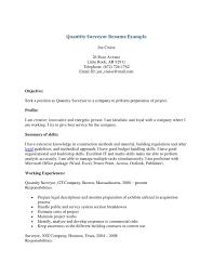 quantity surveyor cv template resume templates quantity surveyor cv template resume templates professional cv format
