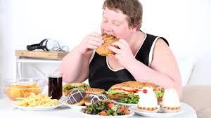Kết quả hình ảnh cho ảnh vui về người béo ăn