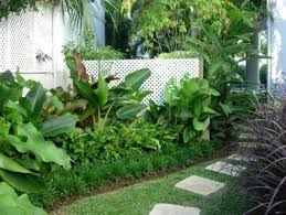 Small Picture Tropical Landscape Design Pictures Remodel Decor and Ideas