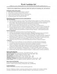 internet marketing consultant resume cipanewsletter superb example of marketing resume brefash