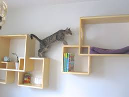 wall shelves playgorund for cats cat furniture modern