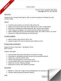 Insurance Sales Resume Objective