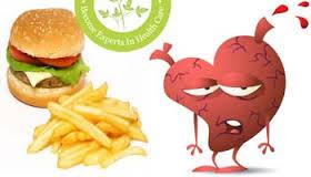 essay on harmful effects of eating junk food   essay for youessay on harmful effects of eating junk food
