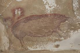 This 45,500-year-old <b>pig painting</b> is the world's oldest animal art