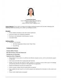 job resume resume cv example template job resume 9