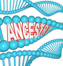 the word ancestry in a dna strand representing the search for stock photo the word ancestry in a dna strand representing the search for your past by researching your genetics finding clues to your heritage and
