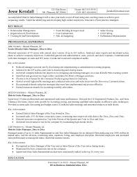 great sales manager resume examples resumes formater resumes formater great sales manager resume examples sample resume sales manager