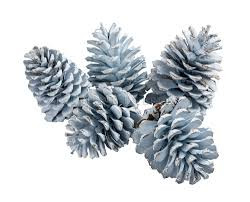 """Новогоднее украшение """"Шишки"""" (<b>набор из 5-ти</b> штук) V1193 ..."""