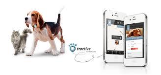 Обзор <b>Tractive</b> - <b>GPS</b> контроль для собак и кошек - Медгаджетс