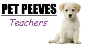 pet peeves teachers watch dogs background gameplay pet peeves teachers watch dogs background gameplay
