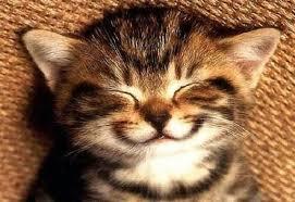 smile ile ilgili görsel sonucu
