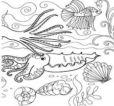 Small Picture Innovative Under The Sea Coloring Sheets 63 777