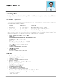 objectives in resume for it  seangarrette cocareer objective resume example with professional experience and expertise