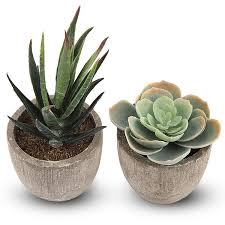 Artificial Plants Succulent Fake Flower <b>Decorative</b> Houses Villas Ball ...