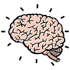 Image result for brain cartoons
