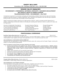 national s manager resume s manager cv example cv template s management jobs dawtek resume and esay