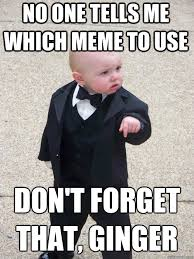 no one tells me which meme to use Don't forget that, ginger - Baby ... via Relatably.com