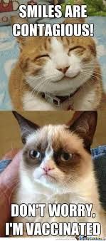 Pessimistic Cat Is Pessimistic by memesrhillarious123 - Meme Center via Relatably.com