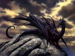meet black magic he is a darkness dragon but is trained well he is a darkness dragon but is trained well you
