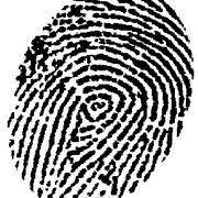 Risultati immagini per little detectives crime scene