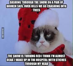 Memes Vault Funny Christmas Grumpy Cats via Relatably.com