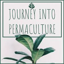 Journey into Permaculture