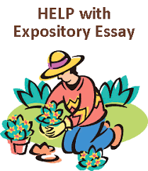 what are expository essaysall you need to know about an expository essay   best essay help all you need