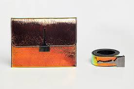 <b>Reflective</b> Brush Bag in <b>Orange</b> & <b>Green</b> | Stroke of Style | Brush by ...
