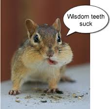Wisdom Teeth Quotes. QuotesGram via Relatably.com