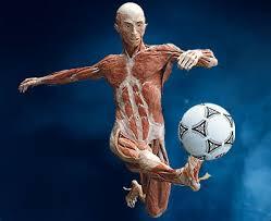 Resultado de imagem para negão jogador futebol