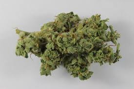 Modern Marijuana Is Often Laced With <b>Heavy</b> Metals and Fungus ...