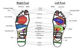 foot massage chart   reflexology charts