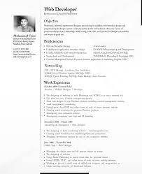 a professional cv doc mittnastaliv tk a professional cv